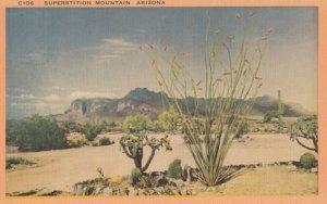 SUSPERSTITION MOUNTAIN , Arizona , 1930-40s ; Cactusses