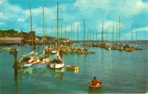 (aa95) Isle of Wight Cowes Harbour Postcard