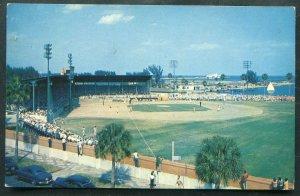 Al Lang Field St Petersburg Florida fl old postcard #2