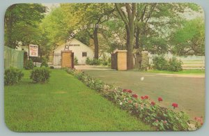 Battle Creek Michigan~Charles Binder Park~Arch Sign Gate~Flowers~1960's