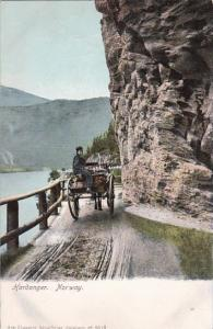 Horse and Cart Hardanger Norway