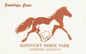 Postcard Kentucky Horse Park Lexington