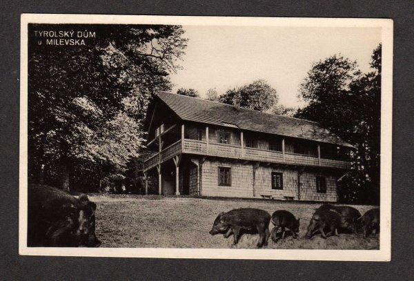 Czechoslovakia Tyrolsky Dum Milevska Czech Republic Swine Pigs Postcard RPPC RP
