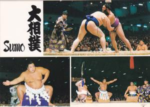 Japanese Sumo Wrestling Multi View Champion Yokozuna-no-Dohyoiri