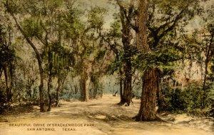 TX - San Antonio. Brackenridge Park Scene