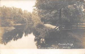 Clinton Michigan~Riverside Drive along River~Lenawee County~1908 Holliday RPPC
