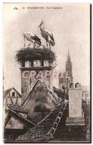 Strasbourg - Strassburg - The Storks - Old Postcard