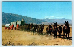 MOJAVE DESERT, CA ~ 20 MULE TEAM Outfit ORE WAGONS c1950s Mining Postcard