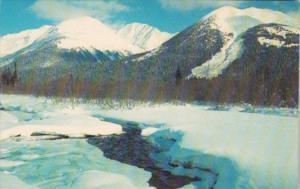 Alaska Winter Scene