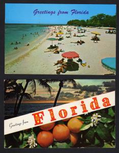 Lot 2 Greetings From Florida Postcards Oranges Beach Sunset