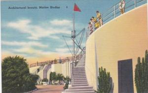 Florida Marineland Beautiful Marine Studios