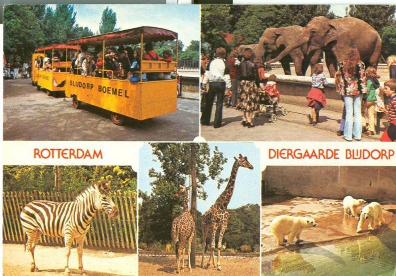 Netherlands, Rotterdam, Zoo, Diergaarde blijdorp 1981 used