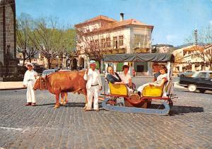 Portugal Old Vintage Antique Post Card Tipico carro de bois Funchal 1968