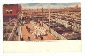 Exchange Avenue, Stock Yards, Chicago, Illinois, 1913