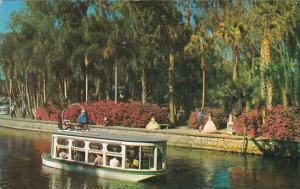 Florida Silver Springs Safe Electrically Propelled Glass Botton Boats
