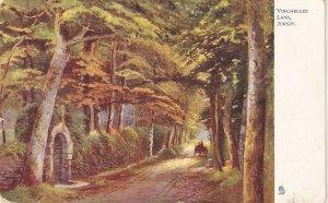 !Vinchellez Lake. Jersey Tuck Oilette Postcard # 1665