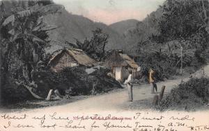 Road to  Castleton, Jamaica, Early Hand Colored Postcard, Used
