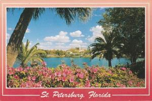Florida St Petersburg Azaleas Beside Mirror Lake