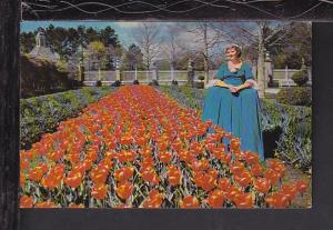 Governor's Palace Gardens,Williamsburg,VA Postcard BIN