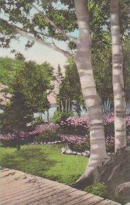 Michigan Les Cheneaux Islands Garden At Islington Albertype