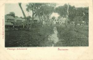 suriname, Plantation Schoonoord (1899)