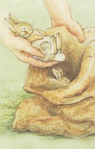 The Tale Of The Flopsy Bunnies Beatrix Potter 1909 Book Postcard