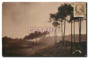Old Postcard Arcachon Gironde sweet autumn morning in the forest to the dunes