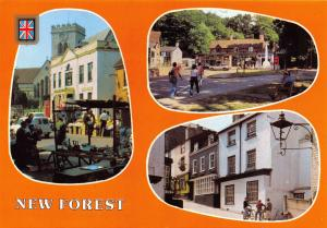Postcard Greetings from the New Forest, Hampshire by FISA L24