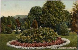 Floral Scene Circle of Flowers Seneca Park NY Rochester New York - pm 1910 - DB