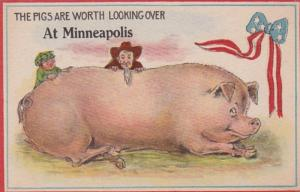 Minnesota Minneapolis The Pigs Are Worth Looking Over Pennant Series