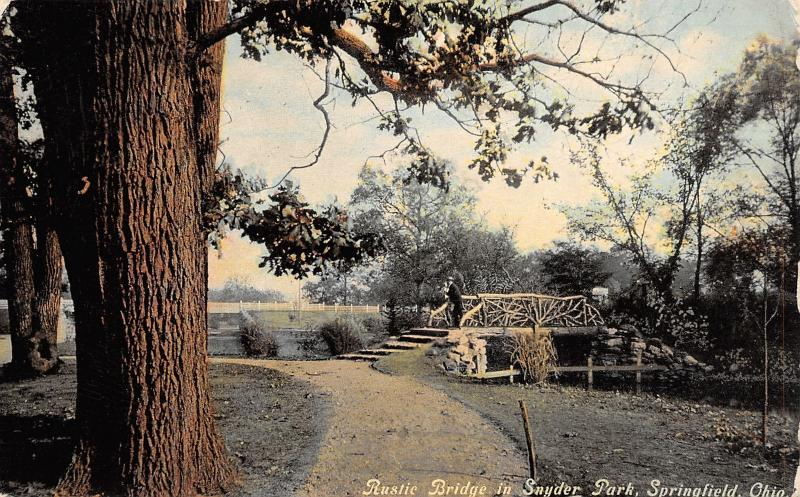 Springfield OH Bentwood Rustic Footbridge in Snyder Park~Bark Close-Up c1908