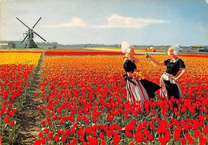 Flowerdecoration Holland 1972