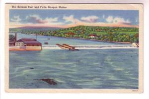 Salmon Pool and Falls, Bangor, Maine, Bangor News Agency