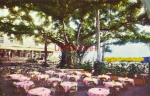 MOANA HOTEL'S WORLD FAMOUS BANYAN COURT LANAI, O'AHU, HONOLULU, HAWAI'I