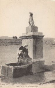 Le Mannenkempis Timgad Algeria Antique Statue Postcard