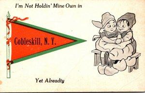 New York Cobleskill Dutch Kids I'm Not Holdin Mine Own 1914 Pennant Series