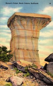 North Dakota Badlands Nature's Pulpit