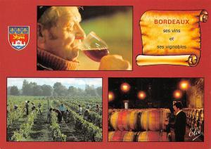 France Bordeaux en Vendanges Gironde