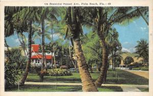 Palm Beach Florida~Beautiful Sunset Avenue~Flower Gardens & Palms by House~1920s