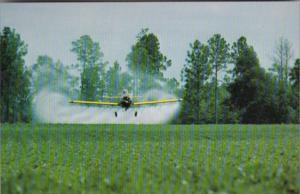 Crop Dusting A Peanut Farm In Georgia