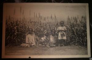 Mint Sweden Postcard Black Americana RPPC African Kids On The Field