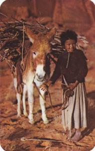 Navajo Lass and her Burro, 40-60s