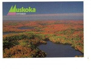 5 X 7 inch, Muskoka,  Ontario