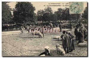 Old Postcard Folklore Normandy Pig In Pig Fairgrounds