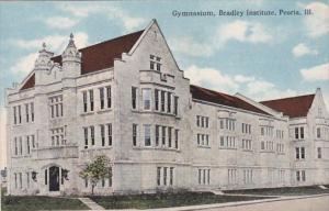 Illinois Peoria Gymnasium Bradley Institute