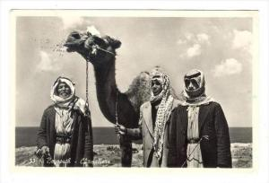 RP  BEYROUTH - Chameliers, Lebanon , PU-1940s , camel