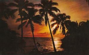 Hawaii Sunset Scene