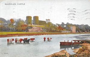 Rhuddlan Castle Ruins Chateau River Cattles