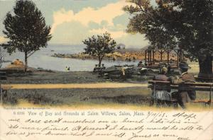 Salem Massachusetts~Salem Willows Bay & Grounds~Couples on Benches~1907 Postcard