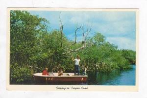 Fishing In Tarpon Springs,Everglades Nat´l Park,FL´61